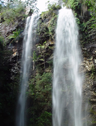 Twin Falls at Springbrook